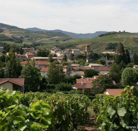 paysages beaujolais villages - © Daniel GILLET