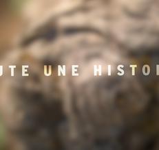 L'épopée du Beaujolais Nouveau