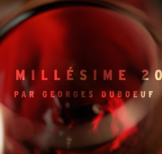 Le millésime 2015 par Georges Duboeuf
